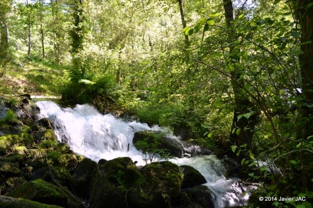 Parque natural Ría Barosa (41)