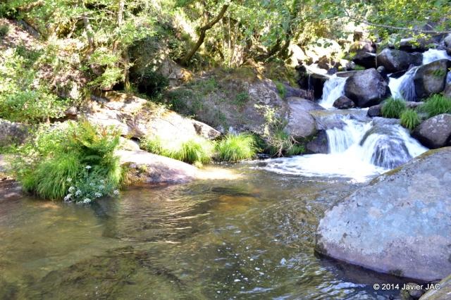 Parque natural Ría Barosa (60)